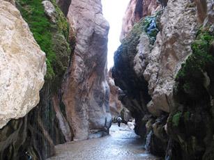 چشمه آب گرم معدنی مرتضی علی